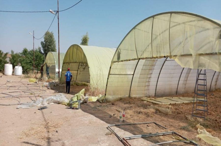 The College of Agriculture carries out a campaign to maintain the Greenhouses in the Station of Research and Agricultural Experiments