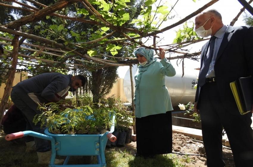 مديرية الاقسام الداخلية تطلق حملة زراعة ١٥٠ شجرة بالتنسيق مع منظمة كوكار