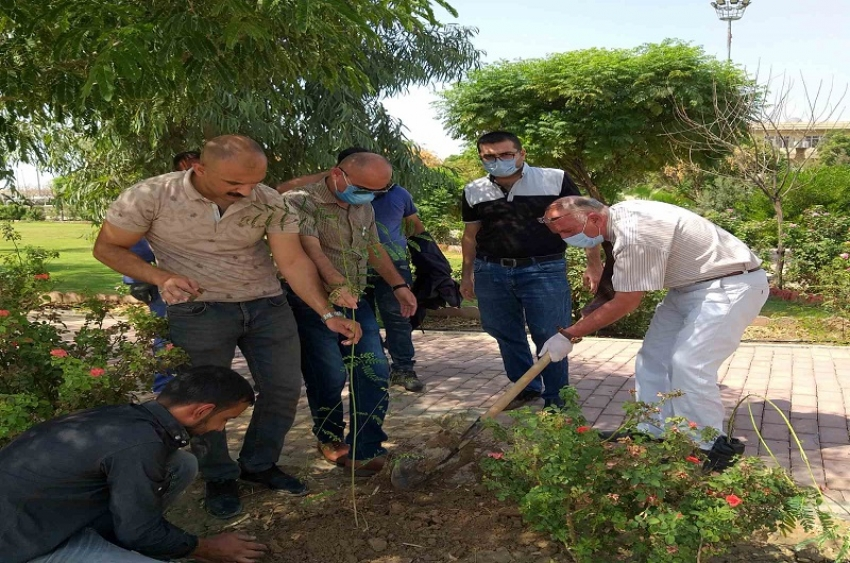 جامعة كركوك تطلق حملة تطوعية لزراعة 100 الف شجرة